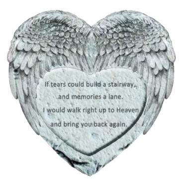 Heart/Angel Wings Stepping Stone